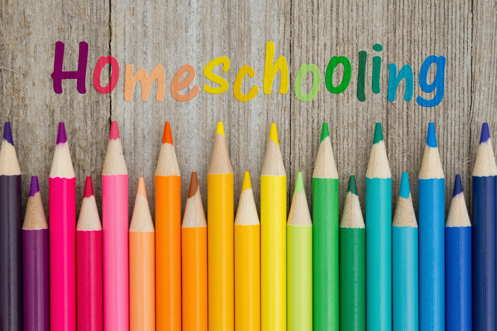 Why we decided to homeschool | HarassedMom