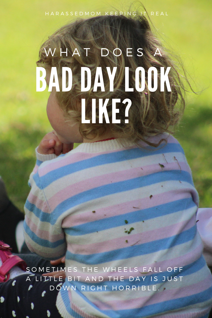 What does a bad day look like? Around here it can get kinda crazy!