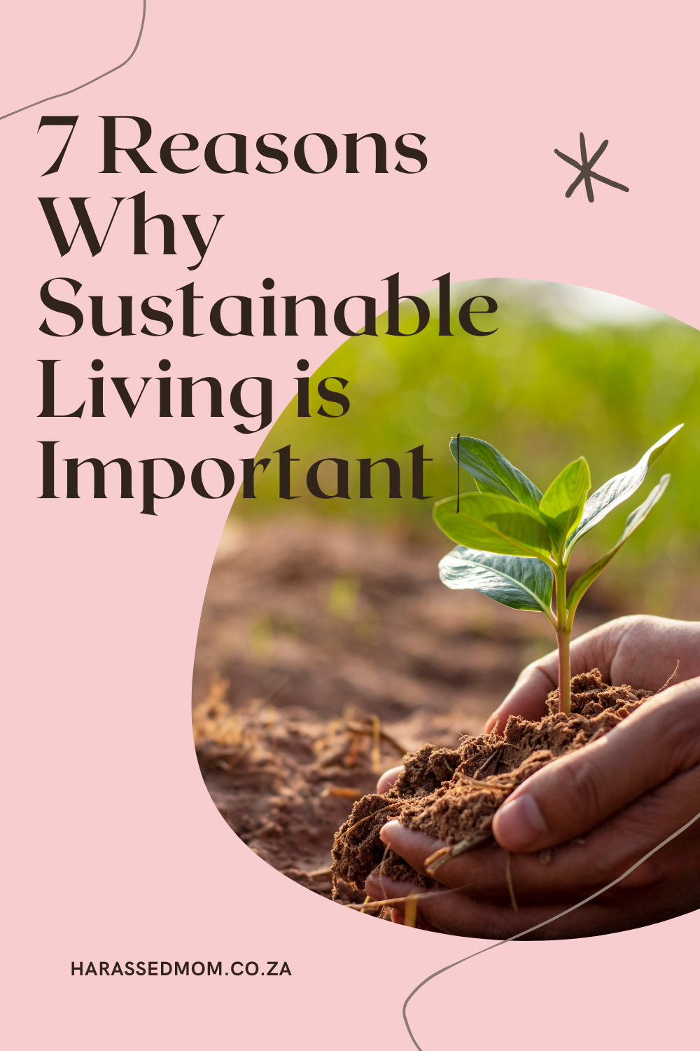 7 Reasons Why Sustainable Living is Important   Sustainable Living with HarassedMom